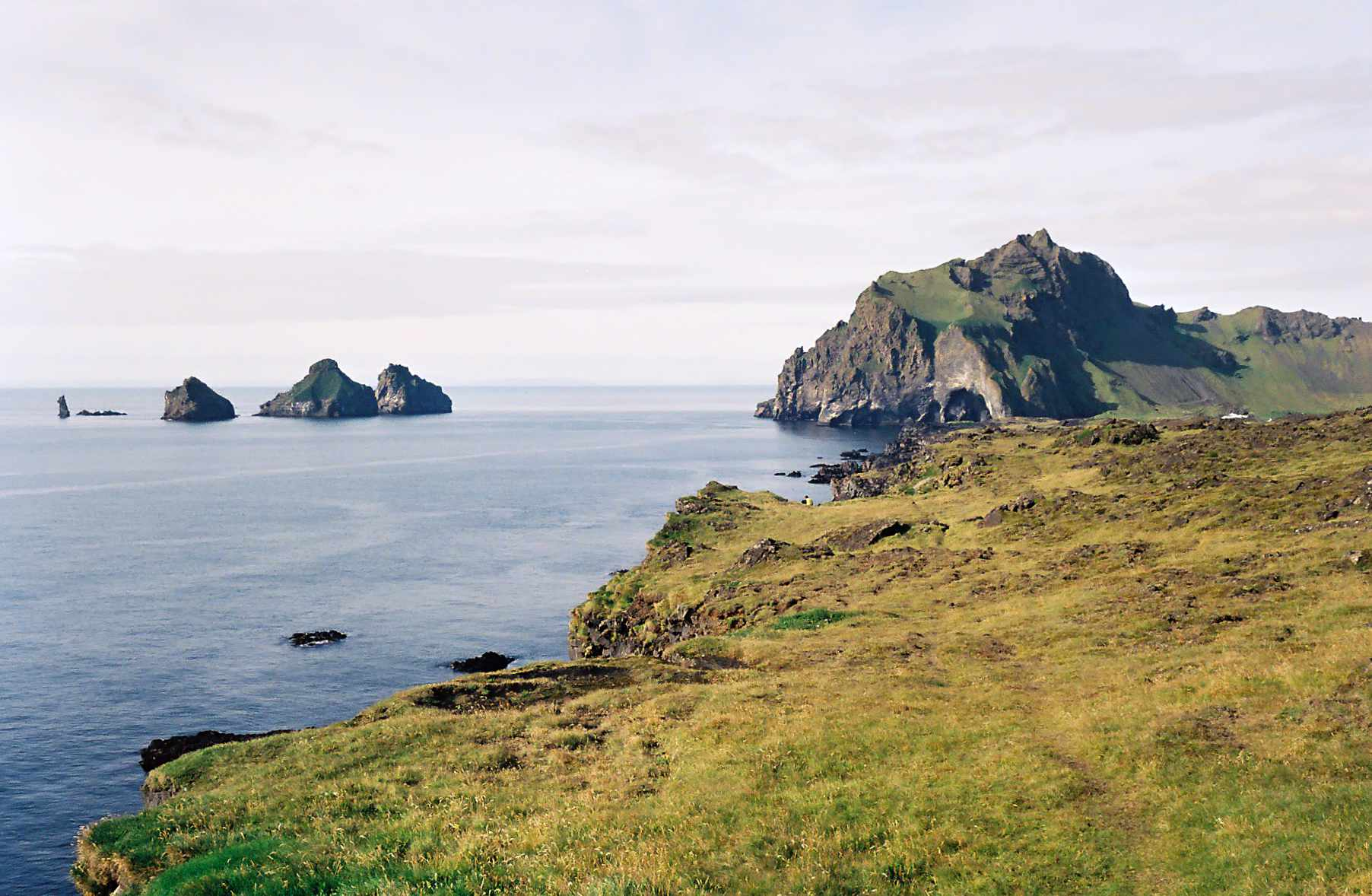 Forssman Übersetzer - Island Landschaft