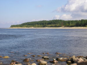Forssman Übersetzer Flussmündung Narva